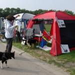 Tilbage på standen efter vi havde gået raceparade med finsk hyrdehund
