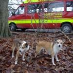 Mikkel og Keeza foran bilen fra Næstved Brand og Redning hvor Mooja træner til redningshund