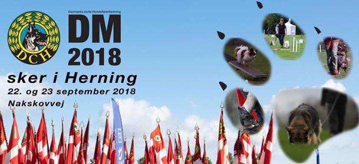 DM 2018 banner