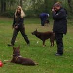 Johanna og Christina træner med Thor og Eliina