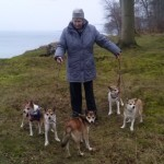 Jytte med sine egne hunde Veli og Donna, samt mine Gaia, Niisa og Tokke