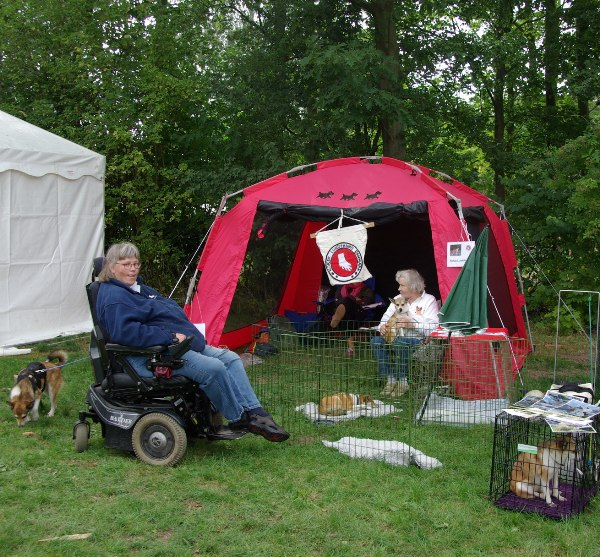 Norsk lundehunds stand