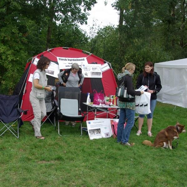 Finsk hyrdehunds stand
