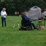 Norsk lundehund i opvisningsringen