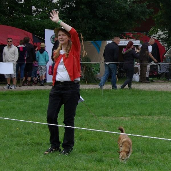 Og hvad gør man når vi ikke har nogen klipper til at demonstrere hvordan lundehunden klatrer i fjeldene?