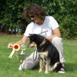 Caana deltog i rally konkurrencen hvor hun blev nummer 3 og hun er du rally-champion. Den første finske hyrdehund med den titel