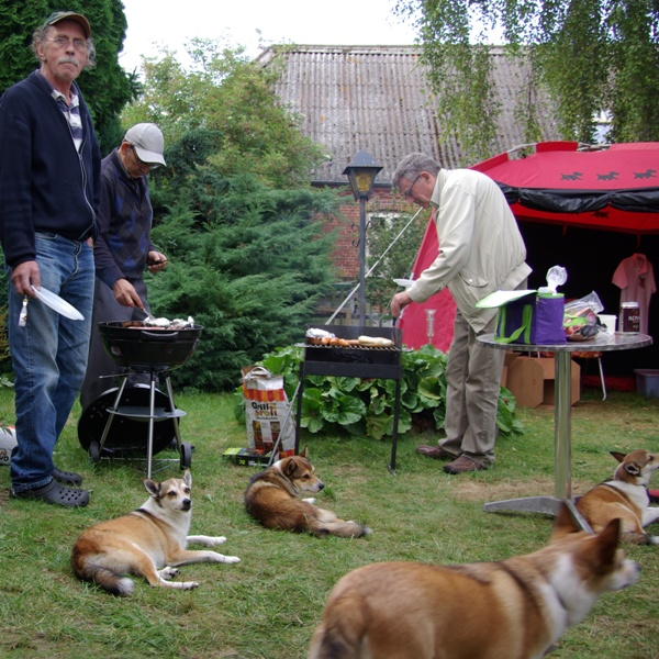 Hundene forstår at holde sig til når grillen er tændt. Det kunne jo være at der var nogen der tabte noget.