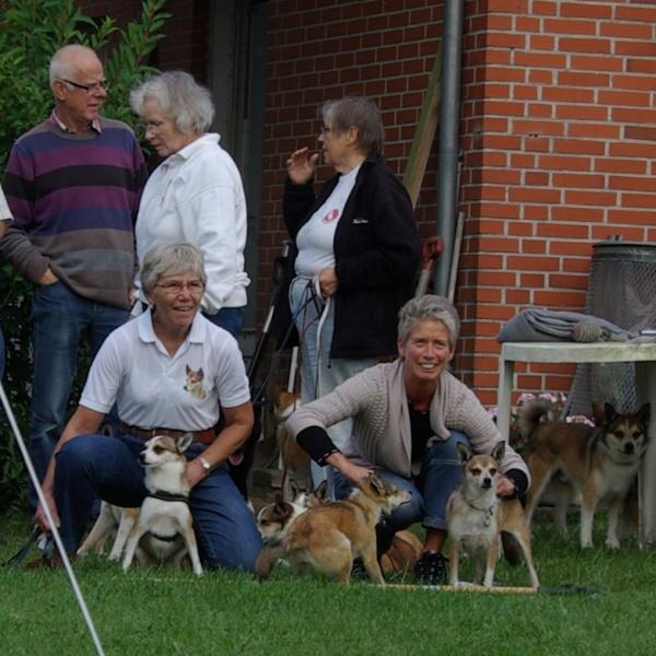 Finalen for tæverne. Nema (de voksne) blev nr 1 - Røskva (de unge) blev nr 2 - Liv (de ældste) lavede først tyvstart og blev nr 3 da de alle 3 løb.