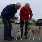 Roar og Anne-Lise prøver at få Havdurs forældre til at stå pænt